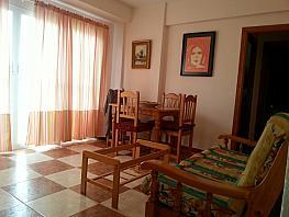 Comedor - Piso en alquiler en Parque Ayala-Jardín de la Abadía-Huelín en Málaga - 393664991
