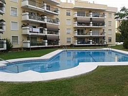 Ático en alquiler en Centro en Torremolinos - 381140729