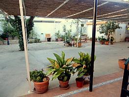 Patio - Piso en alquiler en calle Senda de Granada, Juan Carlos I en Murcia - 352621491