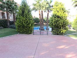 Piscina - Piso en alquiler en calle Del Golf, Altorreal en Molina de Segura - 354187937