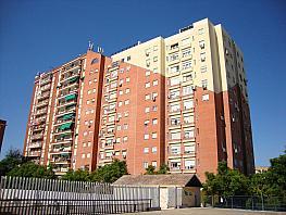 Vistas - Piso en alquiler en calle Castillo de Alcalá de Guadaira, Bami en Sevilla - 377417096