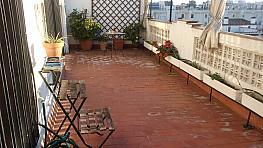 Terraza - Piso en alquiler en calle Bami, Bami en Sevilla - 381118529