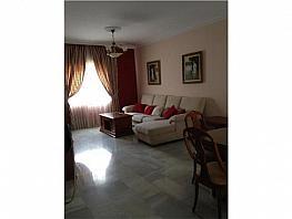 Chalet en venta en Campanillas en Málaga - 296675566