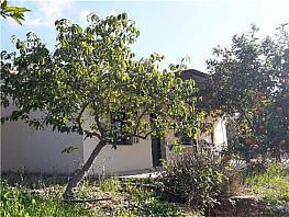 Landgut in verkauf in Cártama - 296675767
