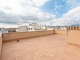 Foto - Ático en venta en calle Rafal Vell, Rafal Nou en Palma de Mallorca - 379992684