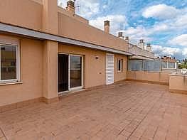 Foto - Ático en venta en calle Rafal Vell, Rafal Nou en Palma de Mallorca - 379992792