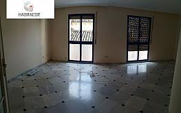 Foto - Piso en alquiler en calle Centro, Centro en Córdoba - 395316212
