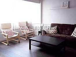 100_7640.jpg - Piso en alquiler en Buenavista-El Cristo en Oviedo - 296288613