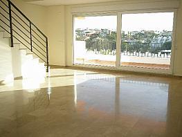 Salón - Piso en alquiler en calle Camelia, Torrequebrada en Benalmádena - 335721308
