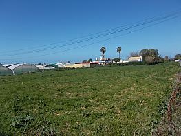 Grundstück in verkauf in paseo De la Reyerta, Jara, La - 254416275