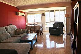 Salón - Piso en alquiler en calle San Pascual, Picanya - 316017909