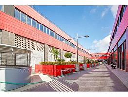 Local comercial en alquiler en calle Fernando de Los Rios, Armilla - 335049167
