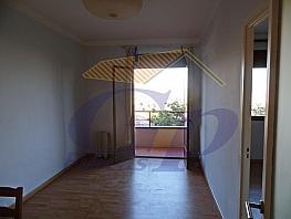 Piso - Piso en alquiler en calle De Cartagena, Barcelona - 330309154