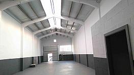 Detalles - Nave industrial en alquiler en calle Cobalt, Bellvitge en Hospitalet de Llobregat, L´ - 373179551