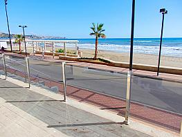 Bajo en alquiler de temporada en paseo Marítimo Rey de España, Torreblanca en Fuengirola - 349747592