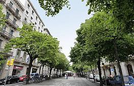 Foto - Local comercial en alquiler en calle Catalunya, Eixample dreta en Barcelona - 292871862