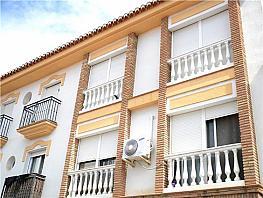 Pis en venda Cúllar Vega - 336345454