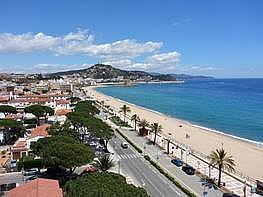 Apartamento en alquiler en calle Mediterraneo, Els Pins en Blanes - 337274564