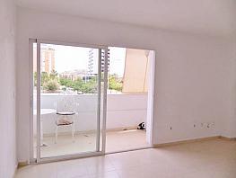 Foto - Piso en venta en calle Gran Via Parque Avenidas, Parque de las Avenidas en Alicante/Alacant - 317465145