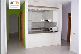 Foto - Piso en alquiler en Centro en Palmas de Gran Canaria(Las) - 334227335