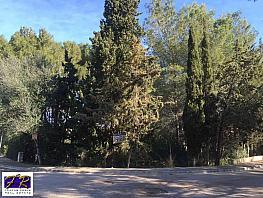 Parcel·la en venda Alcúdia - 330324472