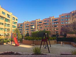 Piso en alquiler en calle Arces, Palomas en Madrid - 262447210