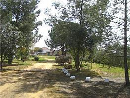 Parcel·la en venda El Regidor a Alcalá de Guadaira - 381524968