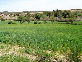 Landgut in verkauf in calle , Castellví de la Marca - 266426768