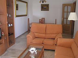 Piso en alquiler en calle Zeus, Reina Mercedes en Sevilla - 328070583