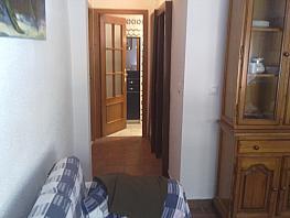 Piso en alquiler en paseo De la Palmera, Reina Mercedes en Sevilla - 330136724