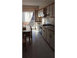 Piso en alquiler en Ourense - 341294129