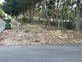 Terreno en venta en calle Ciento Diecisiete, Cañada, La - 280726233