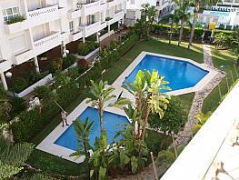 Piscina - Apartamento en alquiler en Marbella - 291516219