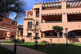 Exterior - Apartamento en alquiler en Milla de Oro en Marbella - 397238259