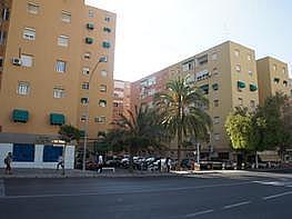 Piso - Piso en venta en calle Del Maestro Alonso, Carolinas Bajas en Alicante/Alacant - 284914170