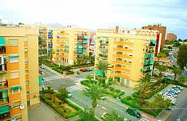 Piso - Piso en venta en calle Avenida Ejércitos Españoles, Juan XXIII en Alicante/Alacant - 302492440