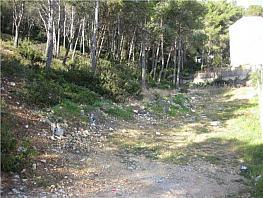 Grundstück in verkauf in Les palmeres in Canyelles - 309850840