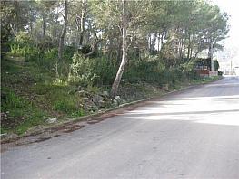 Terreny en venda carrer Pamplona, Les palmeres a Canyelles - 357371181
