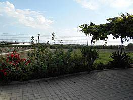 Imagen sin descripción - Casa rural en alquiler en Motril - 315395292