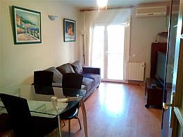 Piso en venta en calle Monestir de Poblet, Regueral - Prat d´En Forés en Cambrils - 354183066
