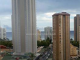 Imagen sin descripción - Apartamento en venta en Benidorm - 284861516