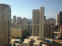 Imagen sin descripción - Apartamento en venta en Benidorm - 320394179