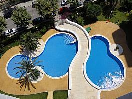 Imagen sin descripción - Apartamento en venta en Benidorm - 336693726