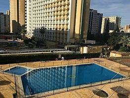 Imagen sin descripción - Apartamento en venta en Benidorm - 388065073