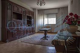 Bajo en venta en Segovia - 305633300