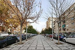 Principal - Piso en venta en calle Primavera, Genil en Granada - 286940126