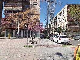 Foto 1 - Local en alquiler en Genil en Granada - 315378991