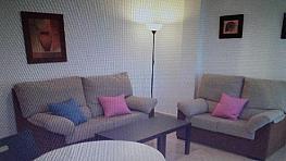 Foto1 - Piso en alquiler en Levante en Córdoba - 381590102