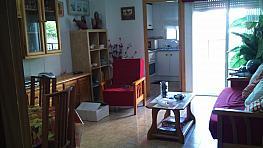Piso - Piso en venta en calle Caballero de Rodas, Torrevieja - 292082943