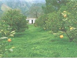 Terreno en venta en Valsequillo - 298569234